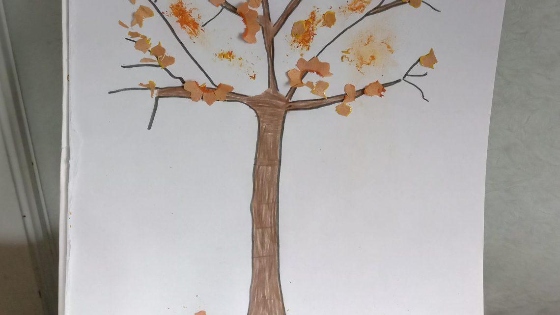 Wenn die ersten Blätter fallen…